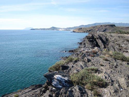 Cetaceos-&-Navegacion-Bahía-de-Mazarrón
