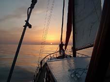 Cetaceos-y-navegacion-Historia-del-Kayram