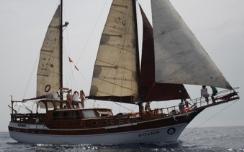 Cetaceos & Navegación - Rutas fines de semana