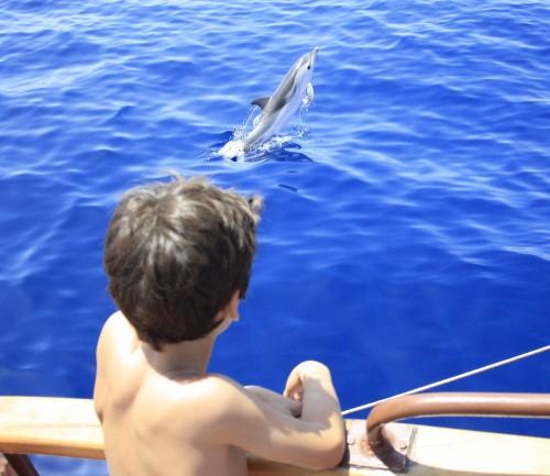 navegar con hijos