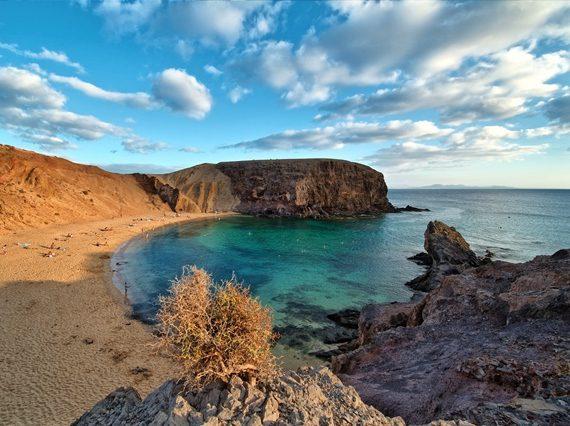 Cetaceos & Navegación - Lanzarote